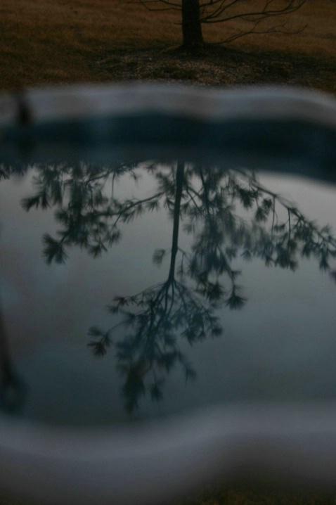 Relective Bird Bath