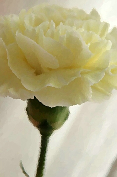 Filtered Flower