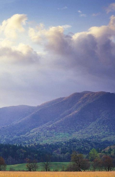 Cades Cove Mountains 1