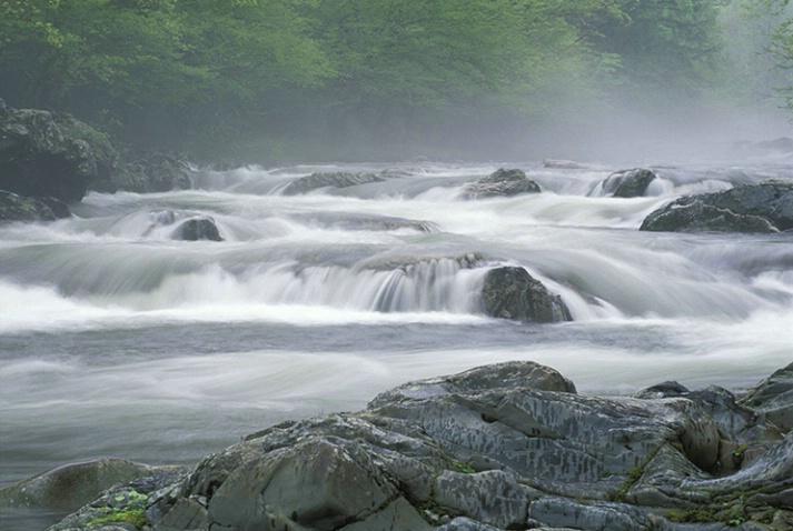 Greenbriar Misty Stream