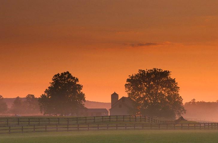 Worthington Valley Misty Farm