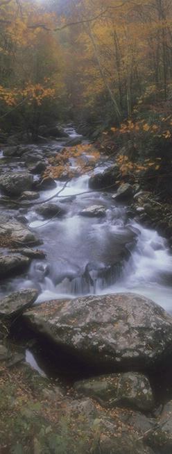 Falls, Tremont