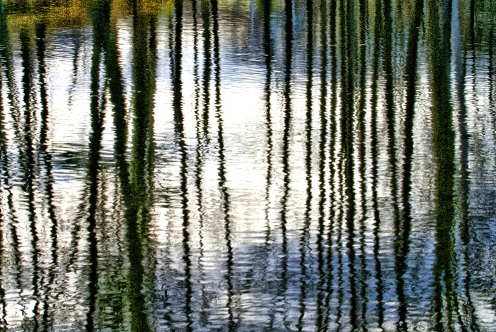 April Reflections