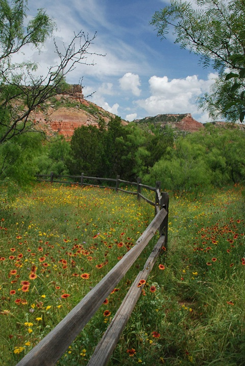 Spring in Palo Duro Canyon