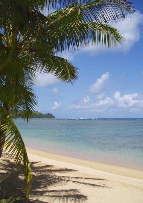 Anni Beach, Kaui