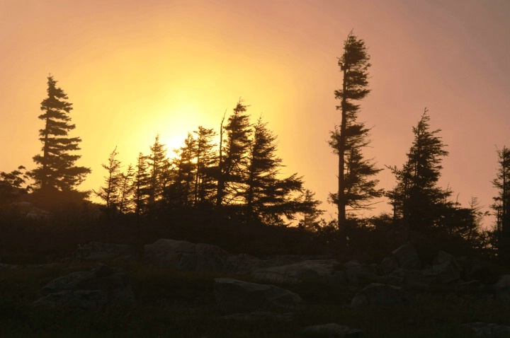 Dolly Sods Sunrise 1