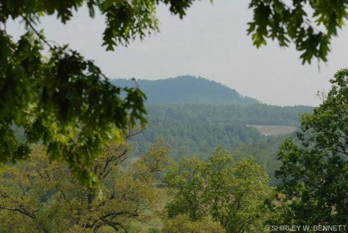 Mountain view at Biltmore