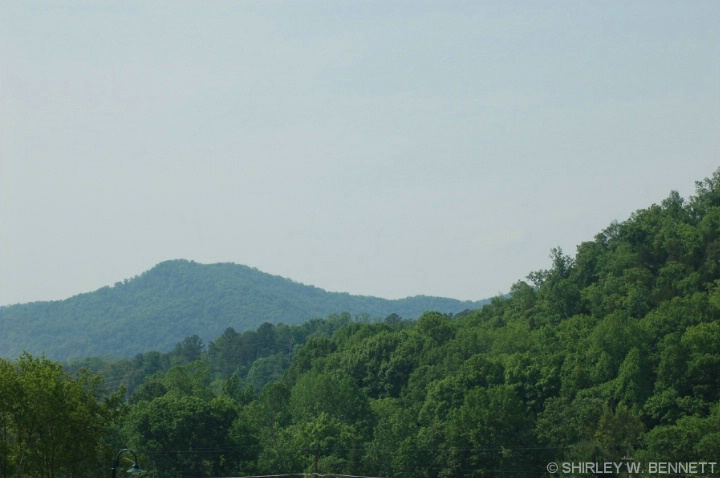 View in the Great Smoky Mountains, 1, from Cade