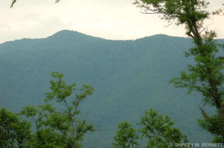 Great Smoky Mountains 3