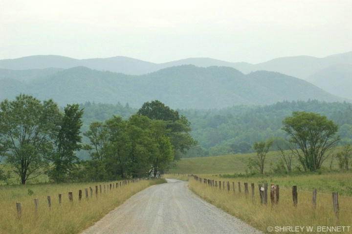 A less traveled road in Cade's Cove