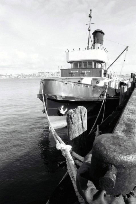 William C Daldy @ Devonport Wharf