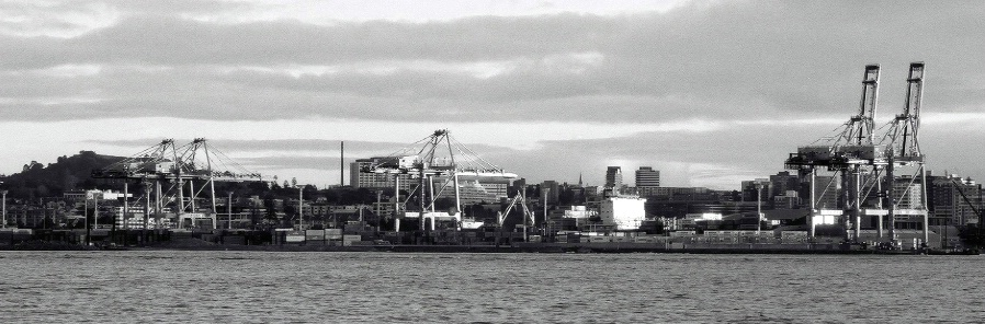 Fergerson Container Terminal  from Devonport