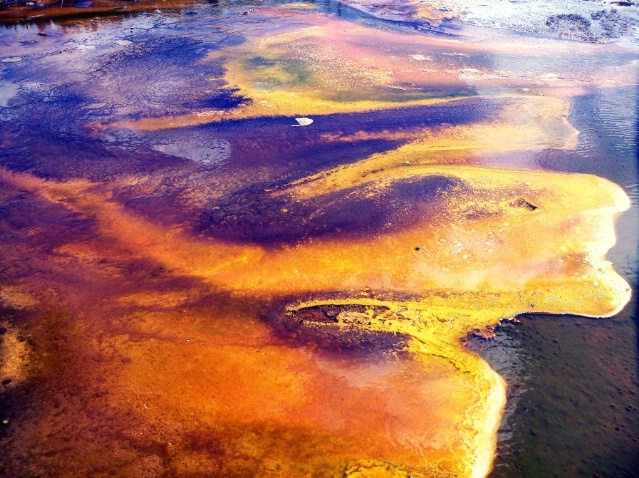 On the ground:bacteria and minerals, Old faithful