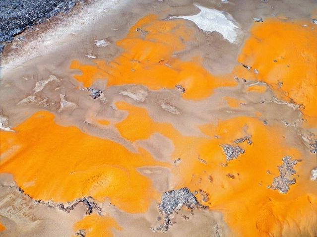 Yellow on the ground, Old faithful area, Yellowsto