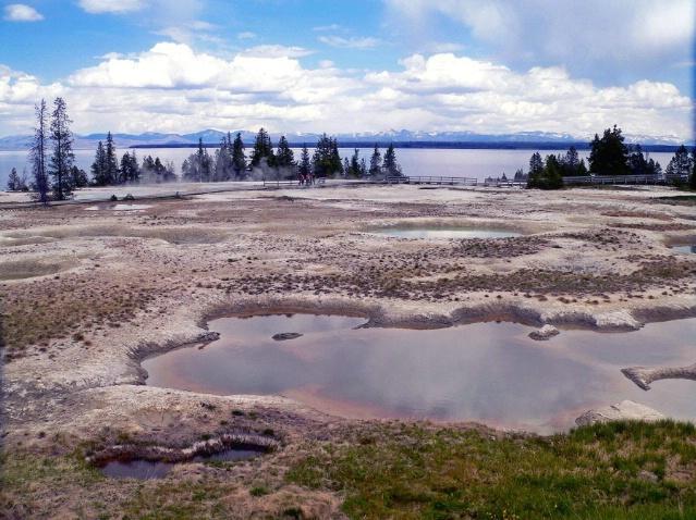 West thumb geyser basin area, Yellowstone, WY
