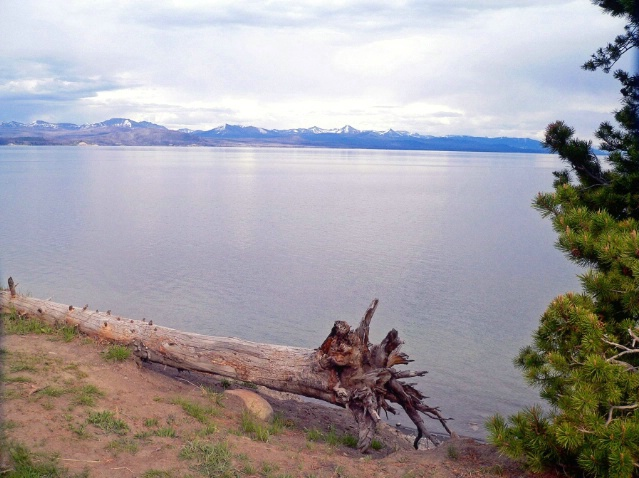 Yellowstone lake,Yellowstone, WY