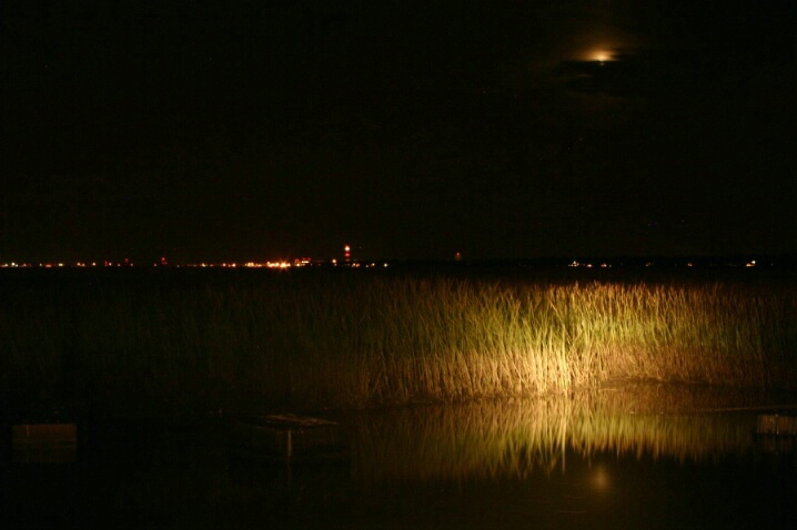 Moon and Marsh