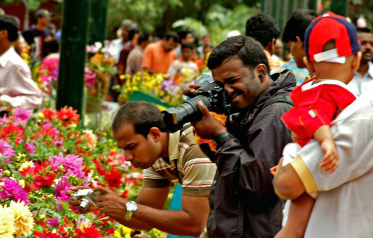 busy photographers