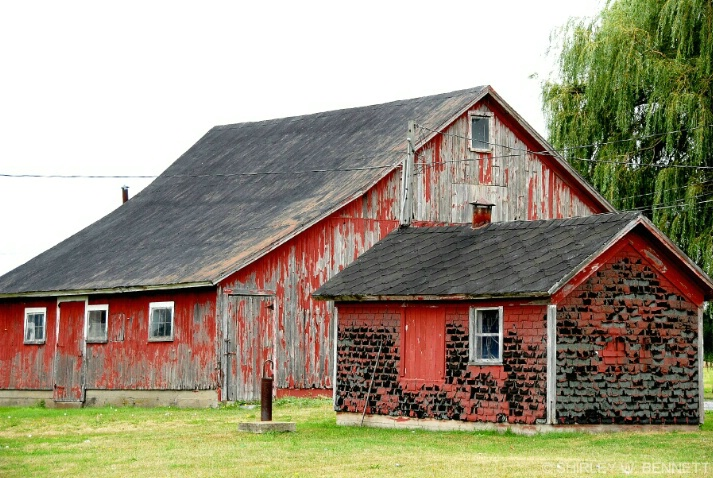 barn_and_shed_1