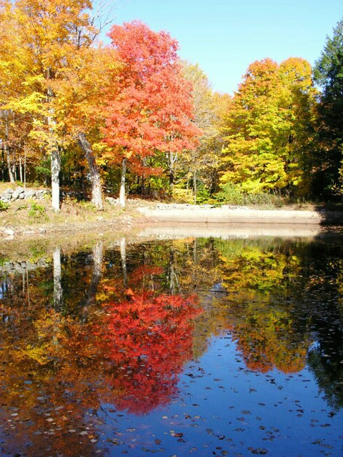 Colorful reflections in NH