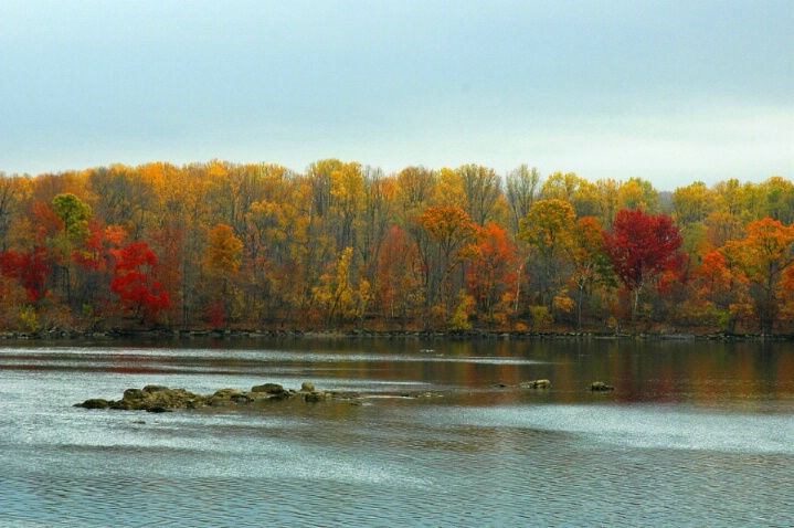 Susquehanna Glory