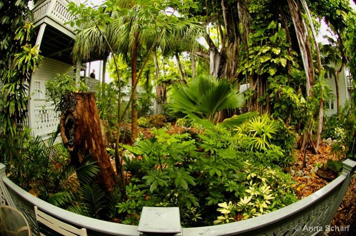 Exotic Garden Eden (re-submit)