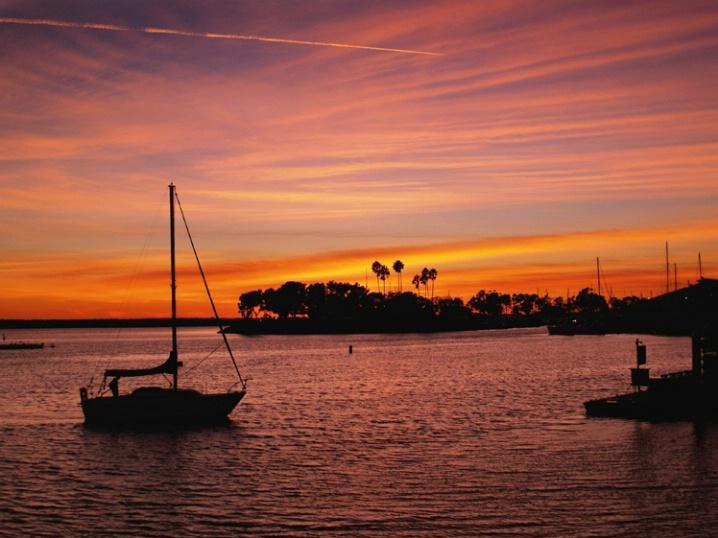 Evening Harbor Sail
