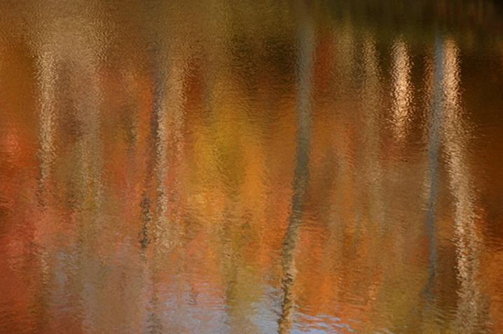 Fall Glory Reflection