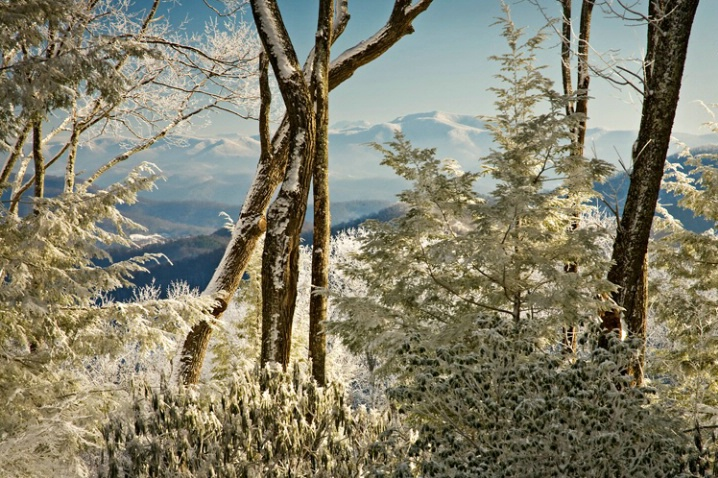 Winter in the Black Mnts
