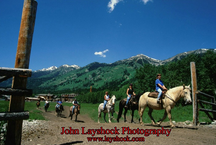 horse_trail_riding_email