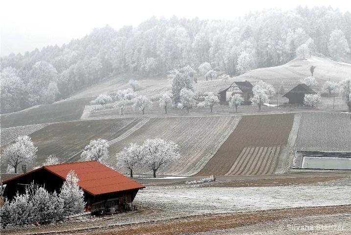 Frosty Hills in Switzerland