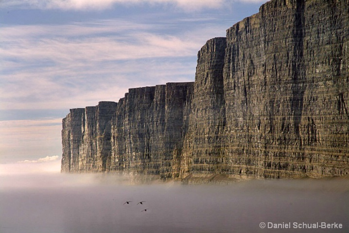 Bird Cliffs 1