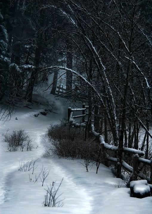 """""""Deer Trail"""""""
