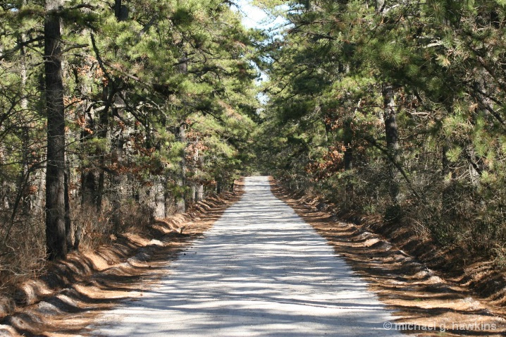 very long road