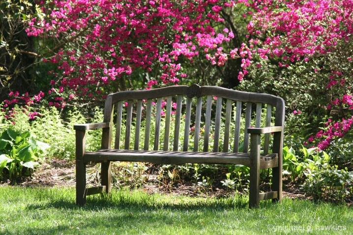 azalea bench