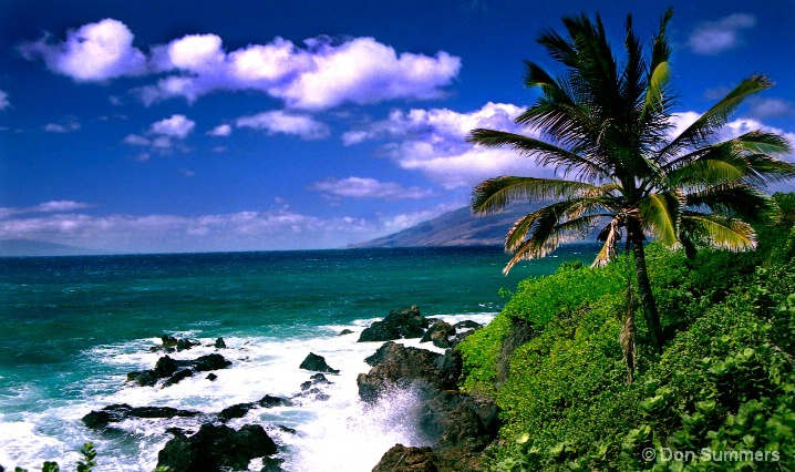 Wilea Bay, Maui, HI 2003