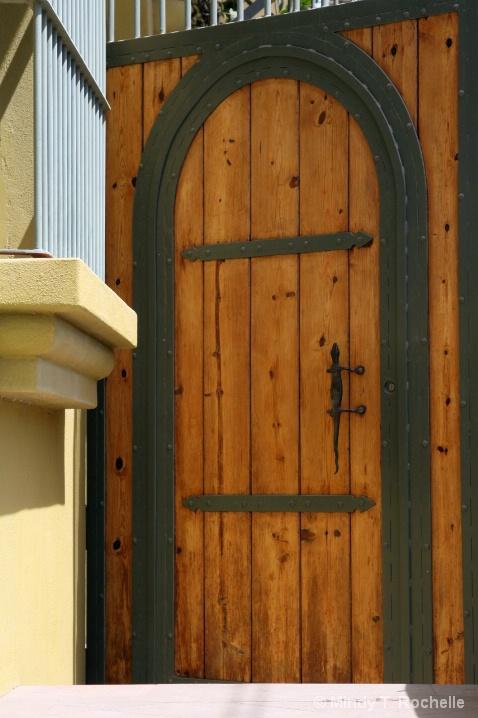 Gecko Door Opener