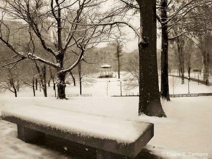 Snowfall,Boston Common