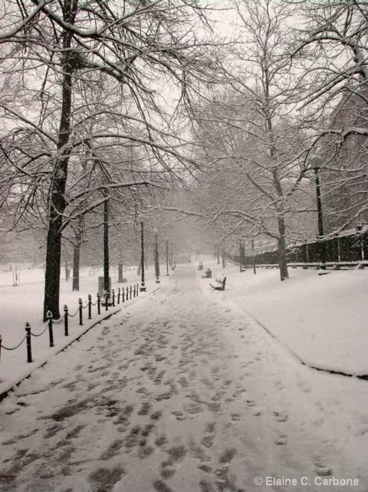 Footprints , Boston Common