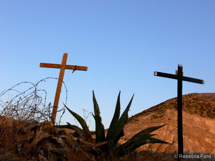 Two Crosses and Agave