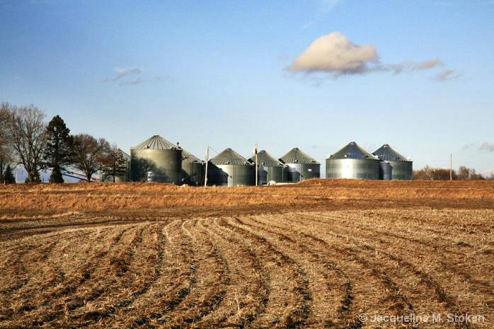 Farmland and Silos