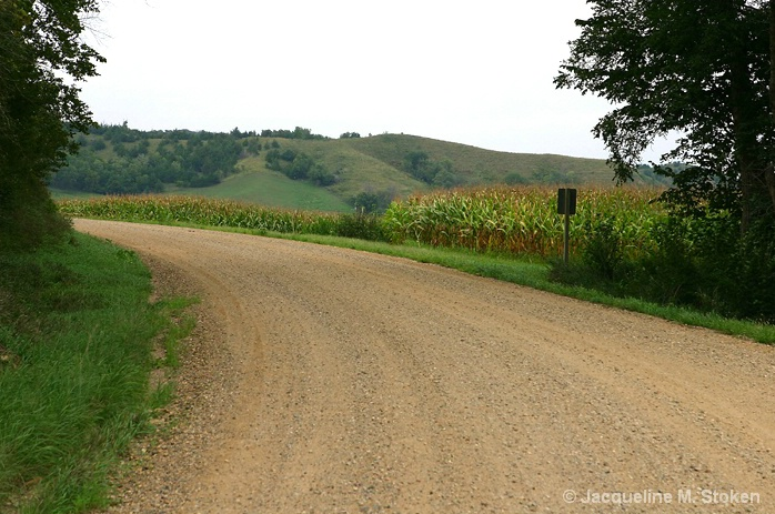 Rural Iowa road, cornfield and Loess Hills