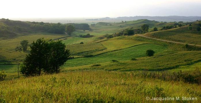 Loess Hills overlook