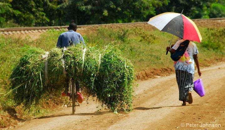 Different Tracks - Tanzania