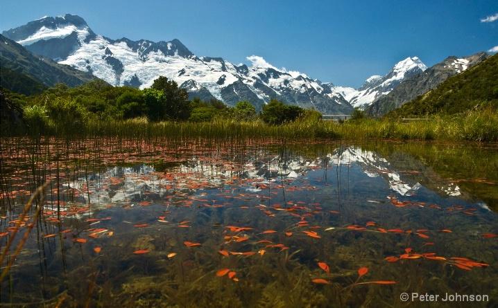 Alpine Pool Reflecting Mt Cook Range - New Zealand