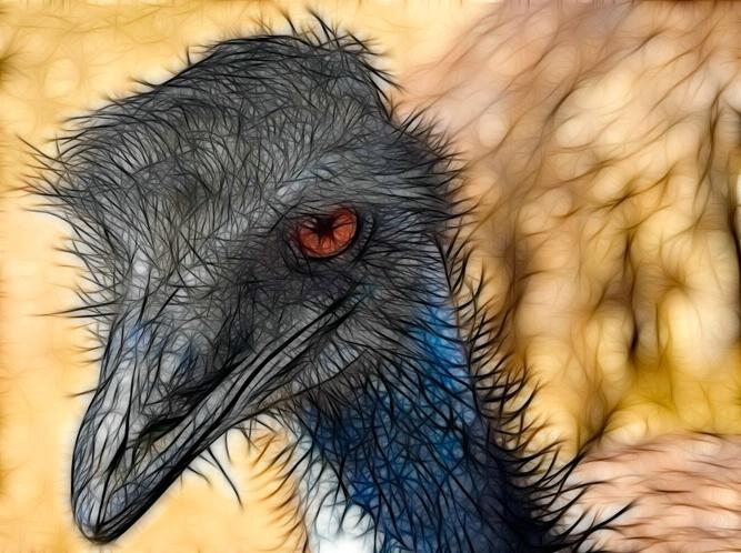 Emus A1