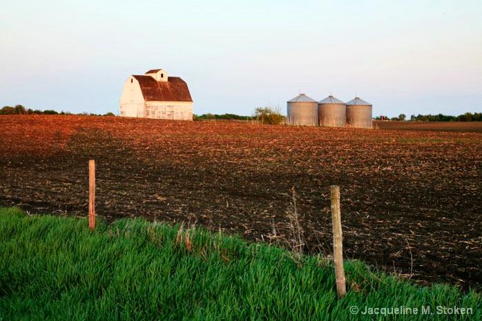 Corn crib and grain bins