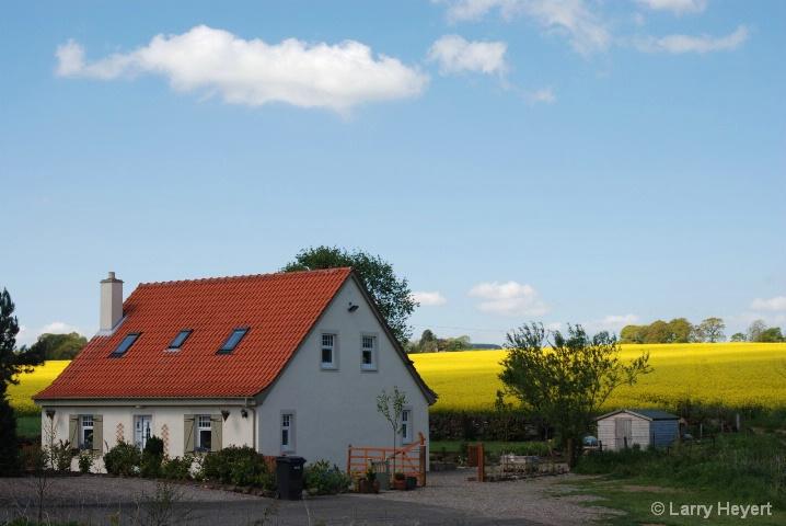 Scotish Countryside