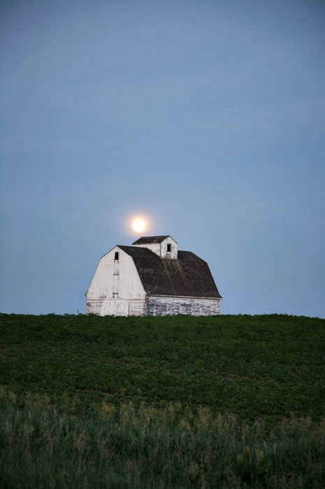 Full moon rising - vertical