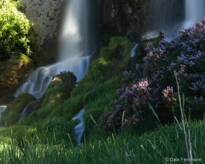 Idyllic Falls